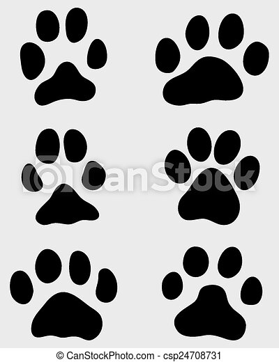paw of cats - csp24708731
