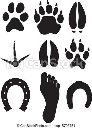 paw prints - csp15793751