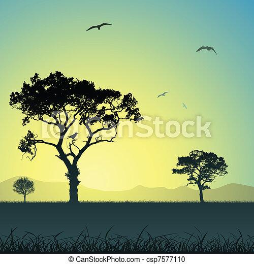 paysage, arbres - csp7577110