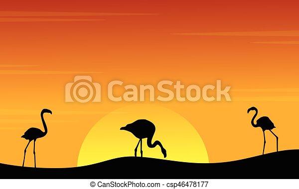 paysage, coucher soleil, flamant rose, silhouette - csp46478177