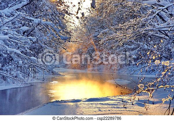 paysage hiver - csp22289786