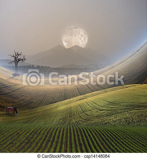 paysage montagne, paisible - csp14148084