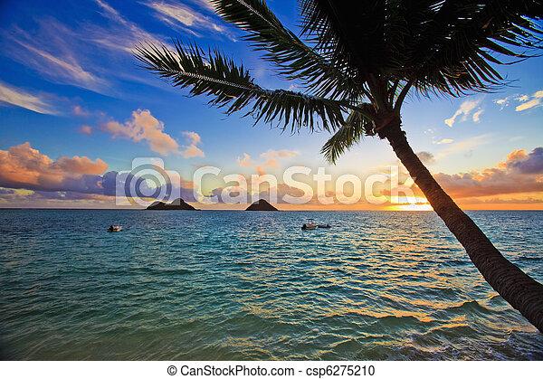 pazifik, lanikai, sonnenaufgang, hawaii - csp6275210