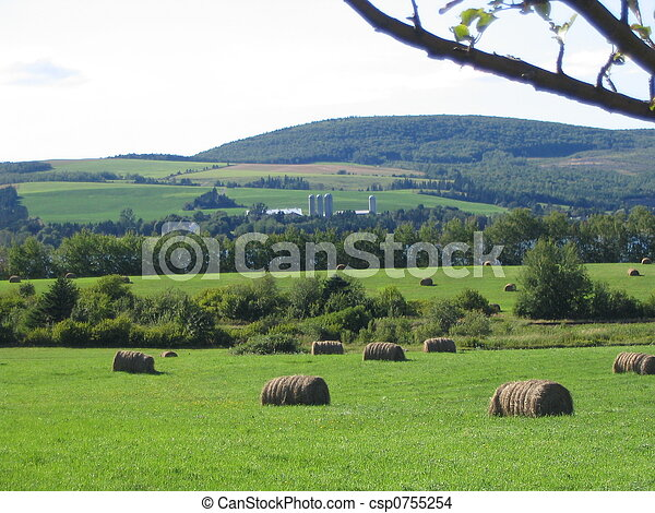 Peaceful Countryside - csp0755254