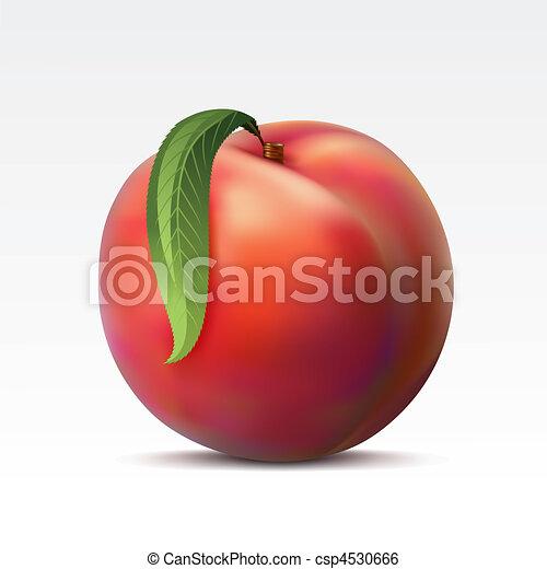 Peach - csp4530666