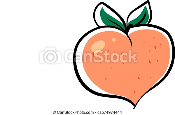 Peach in shape of heart, illustration, vector on white background. - csp74974444