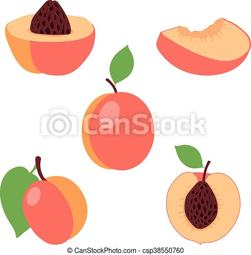 Peach Slice Clipart | www.pixshark.com - Images Galleries ...