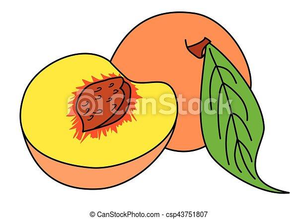 peach. - csp43751807
