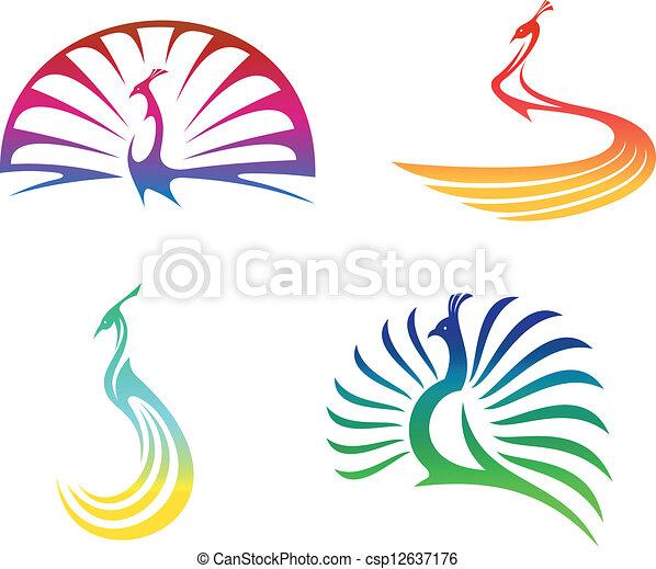 Peacock birds - csp12637176