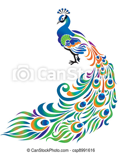 peacock on white background rh canstockphoto com peacock vector line art peacock vector logo
