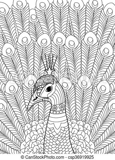 peacock coloring vector for adults csp36919925 - Peacock Coloring Book