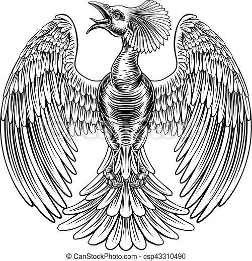 Peacock Phoenix bird design - csp43310490