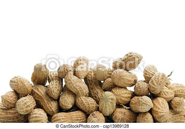 Peanut - csp13989128