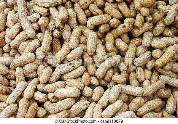 Peanuts In Shells - csp9110879
