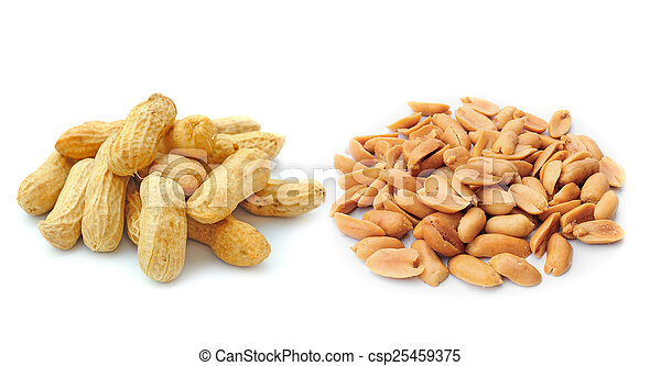 peanuts isolated on white background - csp25459375