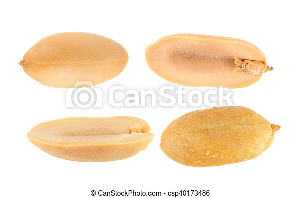 peanuts isolated on white background - csp40173486