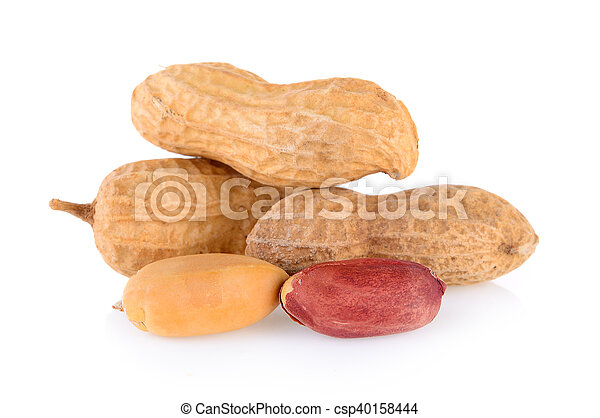 peanuts isolated on white background - csp40158444