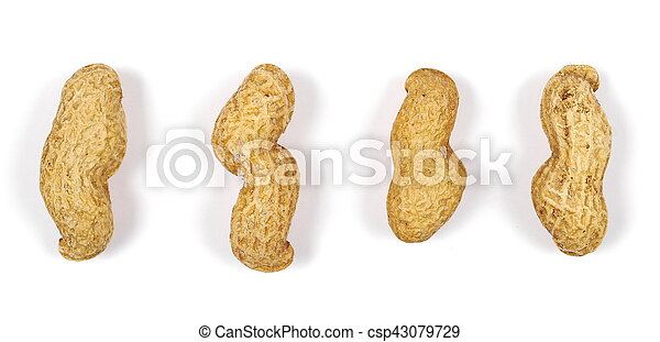 Peanuts isolated on white background - csp43079729