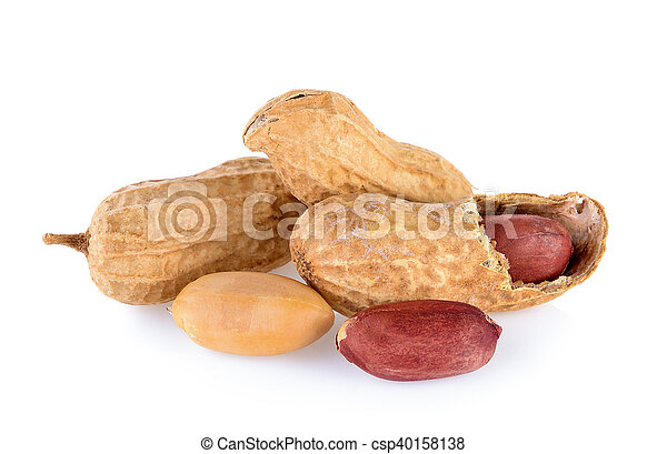 peanuts isolated on white background - csp40158138