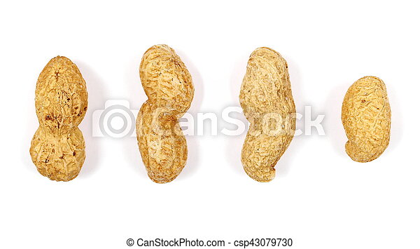 Peanuts isolated on white background - csp43079730