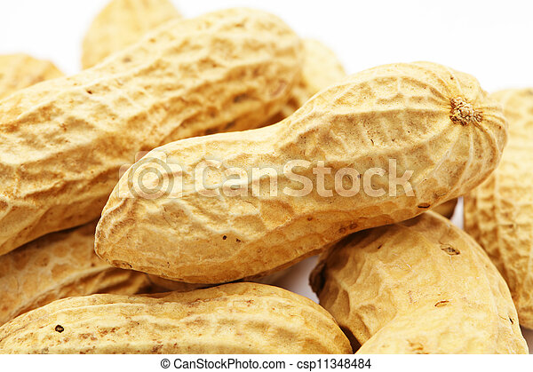 Peanuts on white background - csp11348484