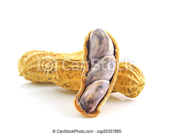 Peanuts on white background - csp25357885