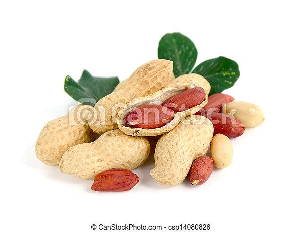 Peanuts on white background. - csp14080826