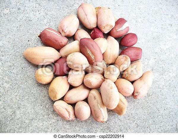 Peanuts - csp22202914