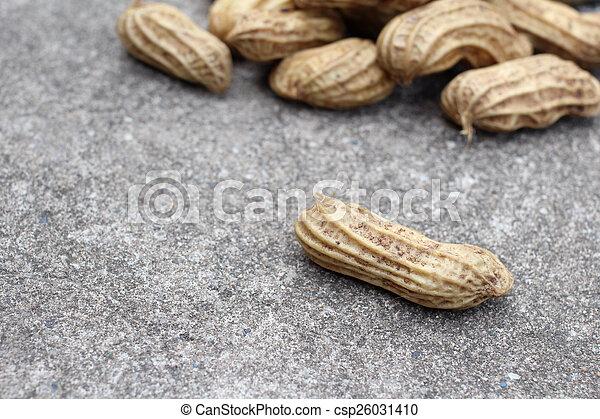 Peanuts - csp26031410
