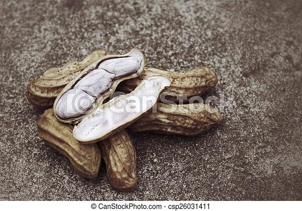 Peanuts - csp26031411