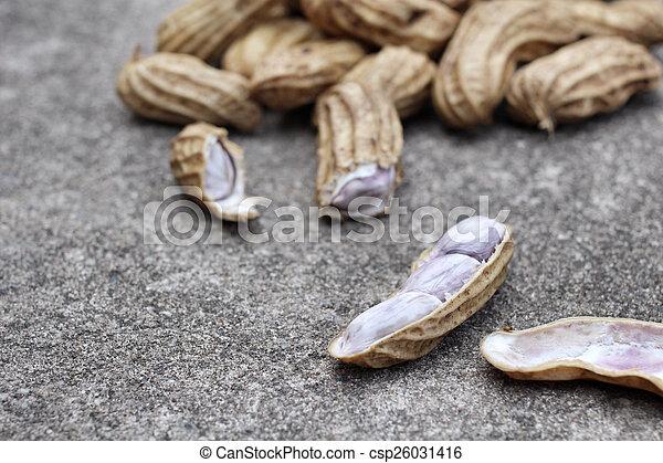 Peanuts - csp26031416