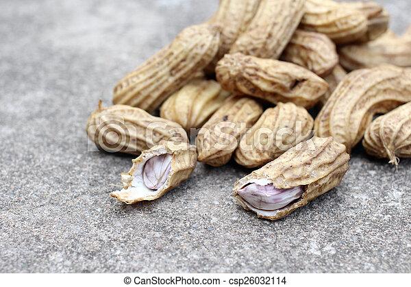 Peanuts - csp26032114
