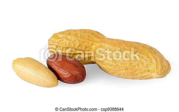Peanuts - csp9388644