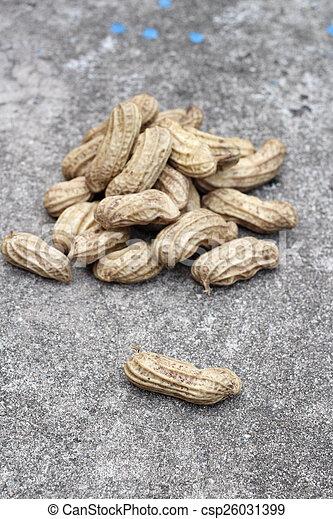Peanuts - csp26031399