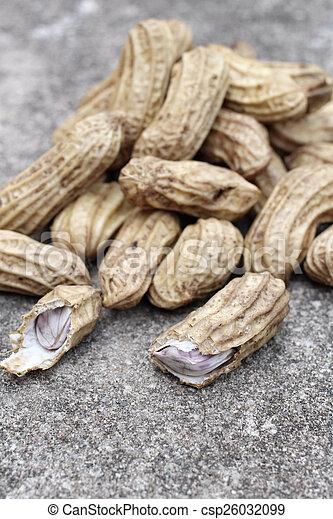 Peanuts - csp26032099