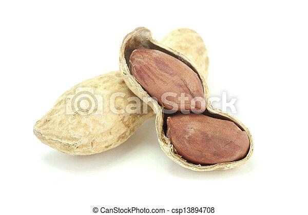 Peanuts - csp13894708
