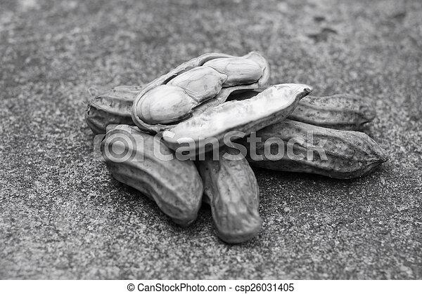 Peanuts - csp26031405