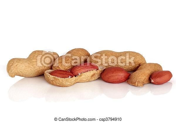 Peanuts - csp3794910