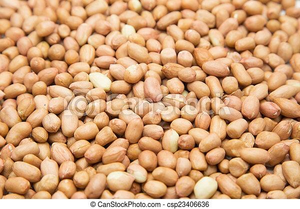 Peanuts - csp23406636