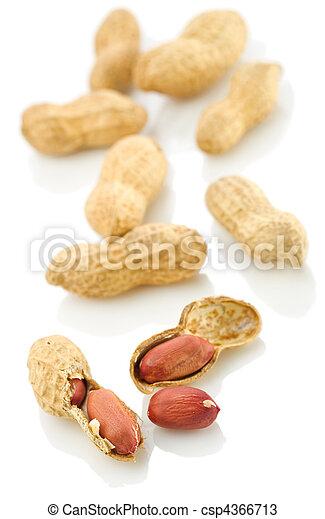 Peanuts - csp4366713