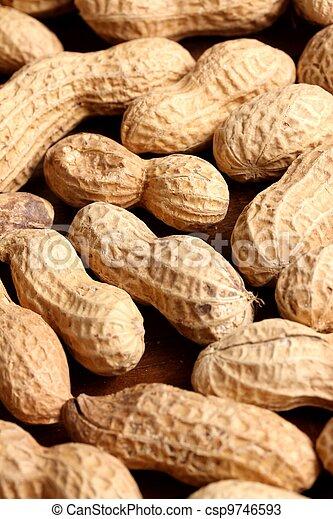 peanuts - csp9746593