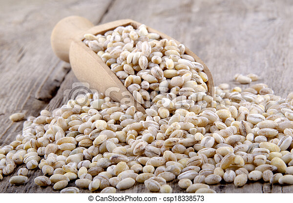 pearl barley on a wooden shovel - csp18338573