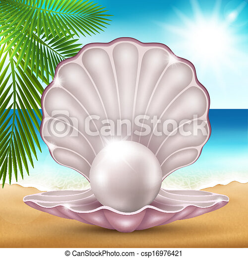 Pearl on the sand - csp16976421