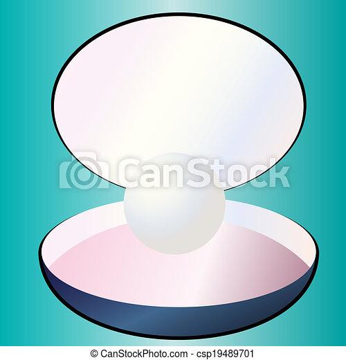 pearl vector - csp19489701