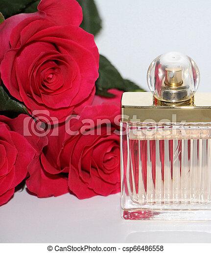 Pearls Foto Uno Rosas Perfume Rojo