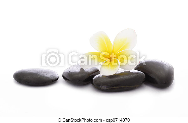 Pebbles and frangipani - csp0714070
