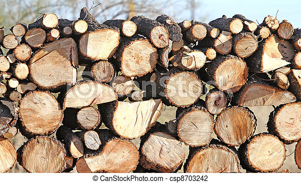 Pecan logs 2 - download this royalty free Stock Photo in seconds. No membership needed.