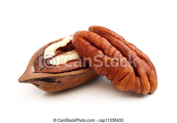 Pecan nuts - csp11338433