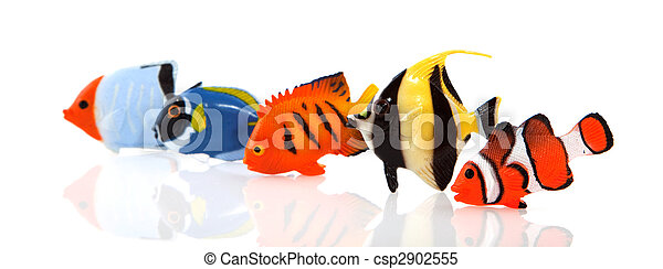 Pescados tropicales - csp2902555