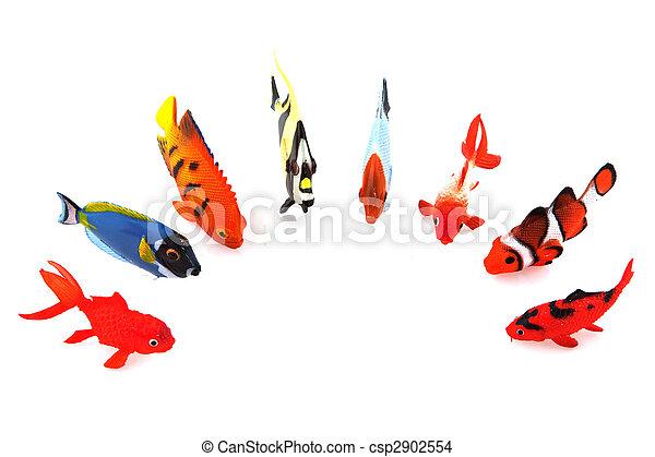 Pescados tropicales - csp2902554